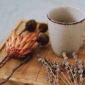 Décembre, le mois de l'Avent, 🎄📅 le mois du partage ! Nous avons la joie d'organiser un jeu concours sur #Facebook avec la marque de thés et infusions naturellement bio et gourmands @pages_the_infusions. #staytuned 💯‼️ 🎉  Jusqu'au 10 décembre, ❤️ tentez de remporter un magnifique coffret #pagès et une bougie 1 mèche Love In St Rémy, à la figue savoureuse… Laissez infuser le bien-être ! ☕️🌾 - #lovinstremy #decembre #avent #noel #faireplaisir #jeuconcours #pages_thé_infusions #herboriste